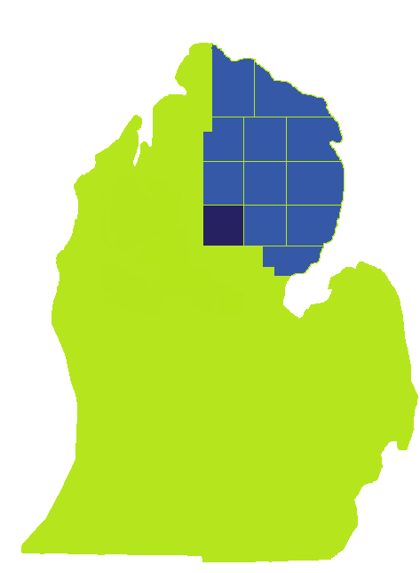"alt=""Michigan map with NEMCSA basic service area"""